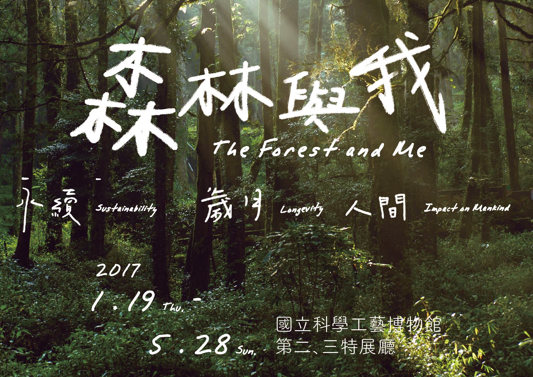 The Forest and Me